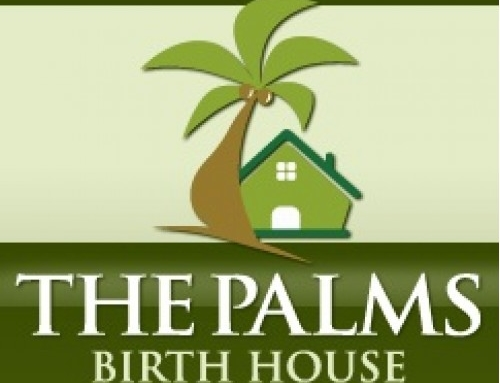 The Palms Birth House